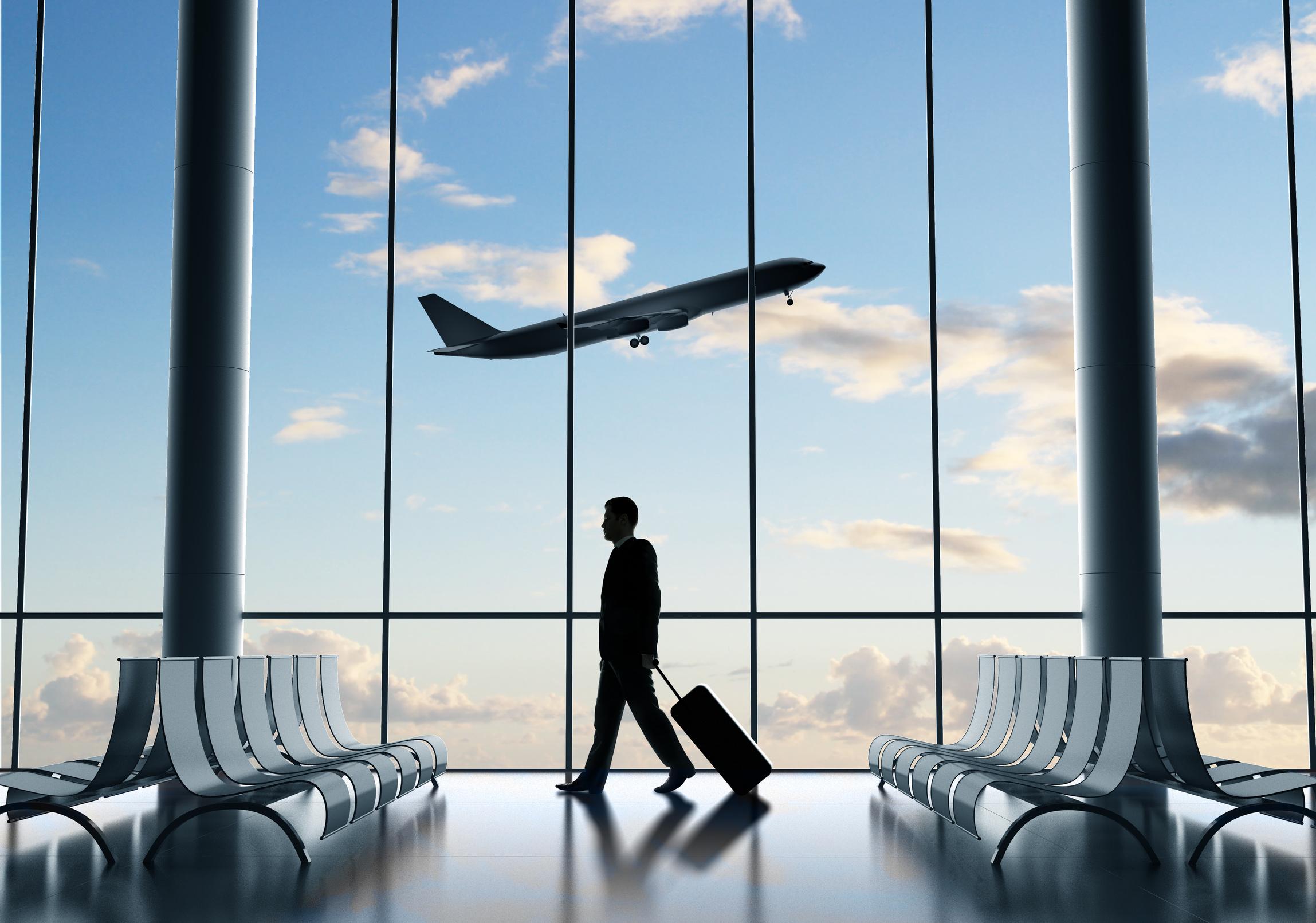 Les acteurs du secteur aérien face aux enjeux écologiques