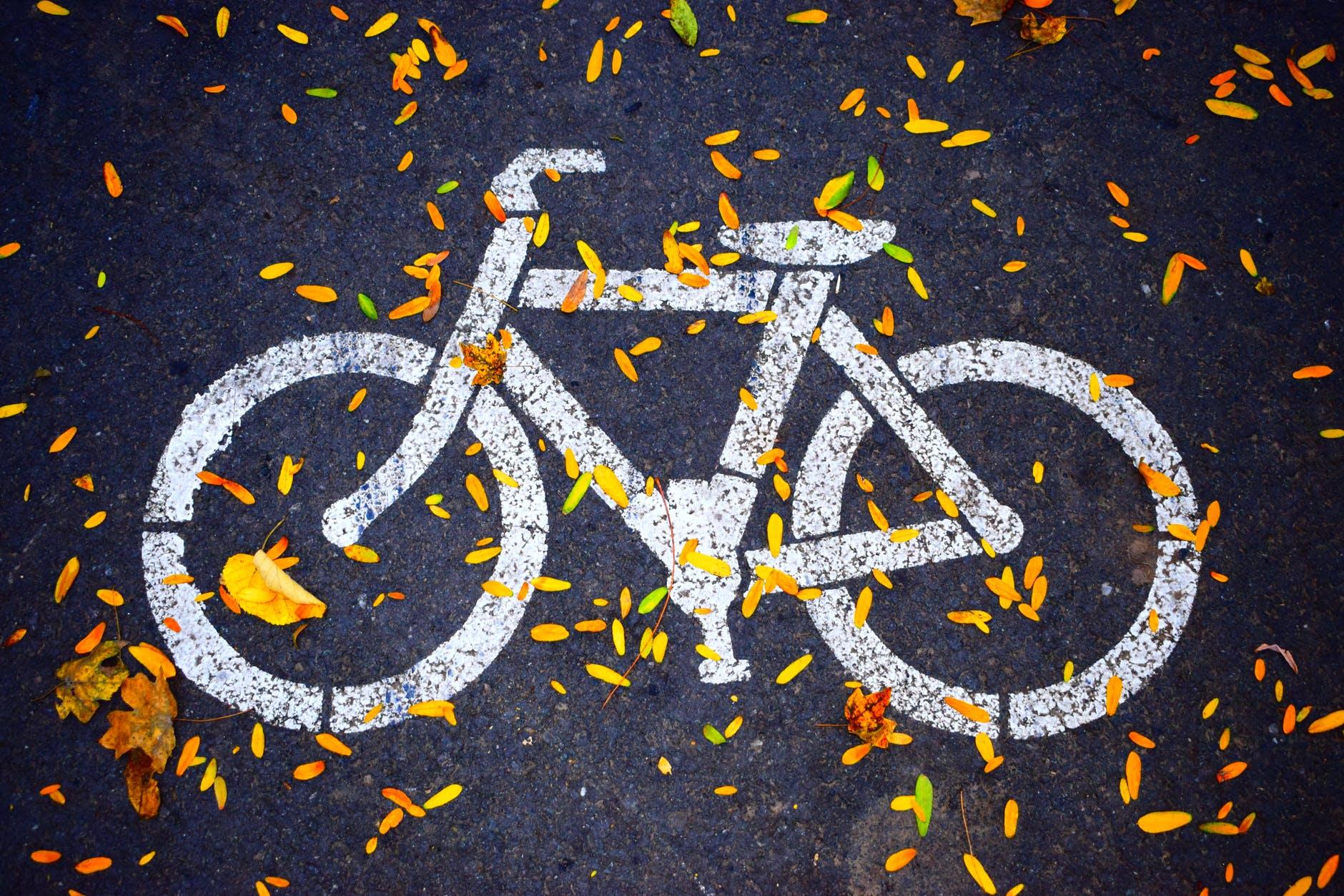 Les vélos cargos : quels impacts sur la mobilité urbaine ?